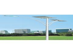 农村改造就用赤尚太阳能景观路灯-- 河北赤尚建筑工程有限公司