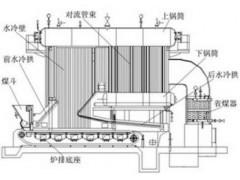 DZL链条炉-- 广州飞立锅炉设备有限公司