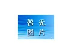 隧道窑吊顶专用硅酸铝模块-- 淄博耀星耐火保温材料有限责任公司