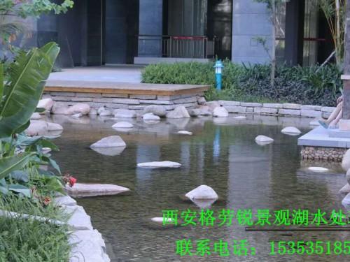 景观水处理 (30)