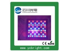 低压直流81W七彩方形LED投光灯投射灯-- 湖北云川光电科技有限公司
