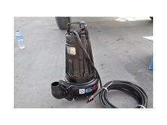 南京蓝深水泵WQ40-10-2.2千瓦出水口径50-- 蓝深集团股份有限公司
