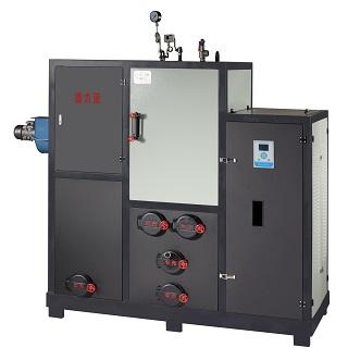 台州生物质锅炉 生物质蒸汽锅炉厂家-- 浙江创元环境设备有限公司