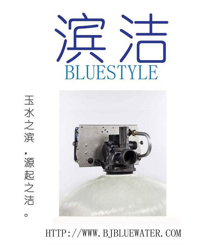 北京碧水深蓝锅炉软化水设备厂家-- 北京碧水深蓝环保科技发展有限公司