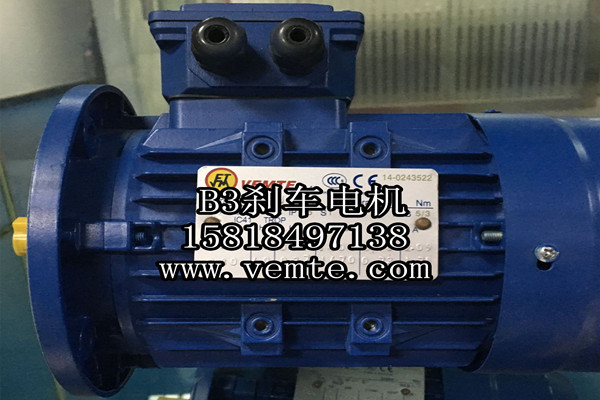 YEJ112MC2-5.5KW三相异步刹车马达-- 永安银河电力有限公司