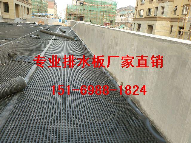 安庆1.5公分车库顶板排水板~滁州2.5公分蓄排水板-- 泰安市绿泰建材有限公司