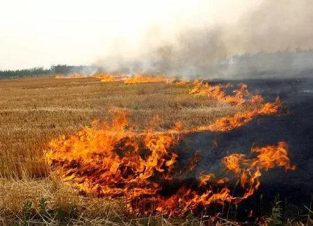污染天气来临 朝阳严查秸秆燃烧、燃煤锅炉、随意焚烧
