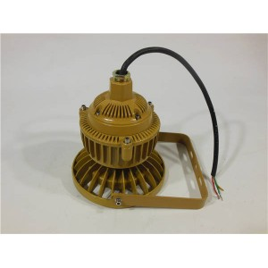 LED防爆泛光灯20W30W护栏式防爆灯BFC8150B