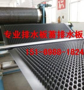 天津 塘沽车库顶板排水板价格优 质量好1516
