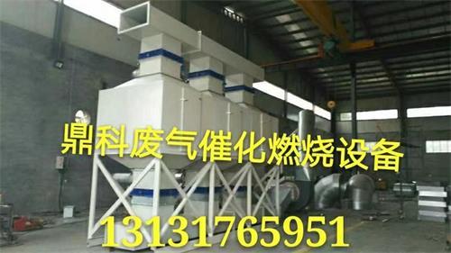 自动检测燃烧温度废气催化处理设备-- 泊头市鼎科环保设备有限公司