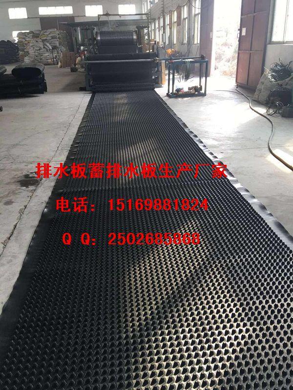 泸州%%成都2公分高车库排水板价格直销15169881824-- 泰安市泽瑞土工材料有限公司