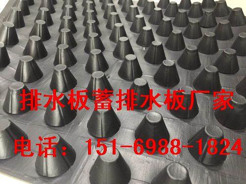 政府推荐山东泰安车库排水板>地下室排水板生产厂家-- 泰安市泽瑞土工材料有限公司