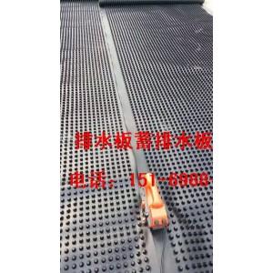 株洲2公分绿化蓄排水板//芜湖1.5公分