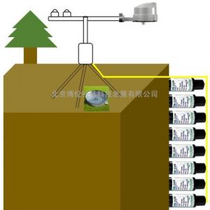 包气带水盐热监测系统WSH-TDR310S