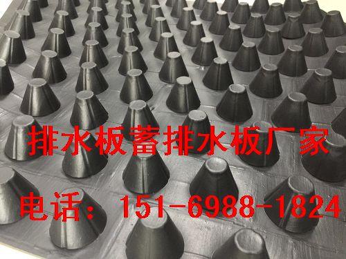 吉安蓄排水板2.5公分(贵州)种植(车库)绿化排水板-- 泰安市泽瑞土工材料有限公司