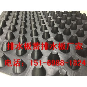 吉安蓄排水板2.5公分(贵州)种植(车库