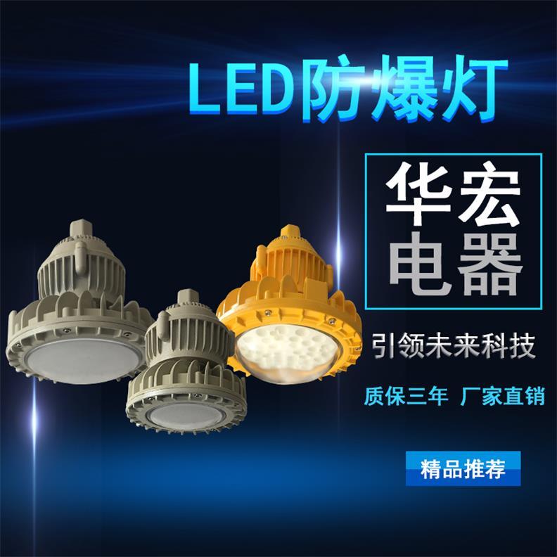 BAD808-M2 LED防爆灯 立杆LED防爆灯-- 宜兴市华宏电器制造有限公司销售部