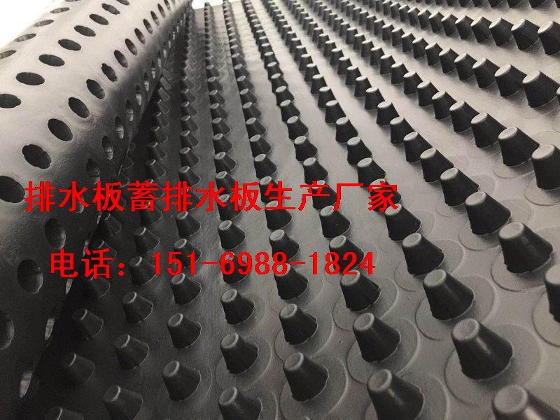 大量现货北京2.5公分(蓄排水板)价格15169881824-- 泰安市泽瑞土工材料有限公司