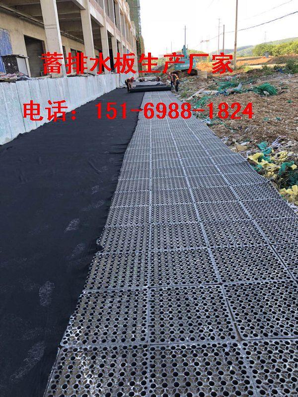 北京\天津30高25高20高50高蓄排水板出厂价格