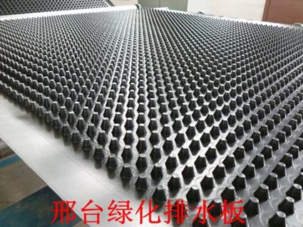 邢台城市建设绿化排水板供应-- 泰安市程源排水工程材料有限责任公司