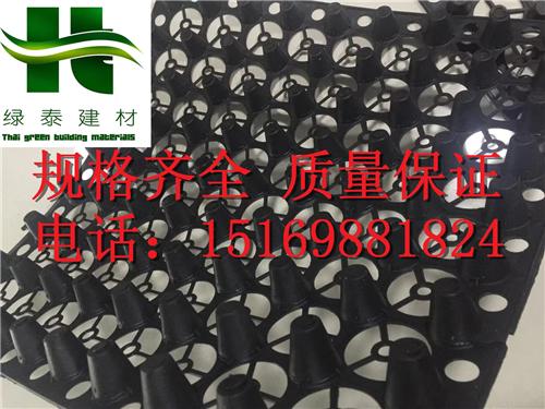 江西/赣州聚乙烯车库排水板(2公分)绿化蓄排水板-- 泰安市泽瑞土工材料有限公司