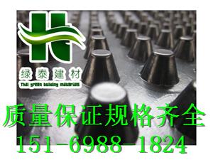 济南3公分蓄排水板=潍坊20高车库顶板排水板-- 泰安市绿泰蓄排水板厂家