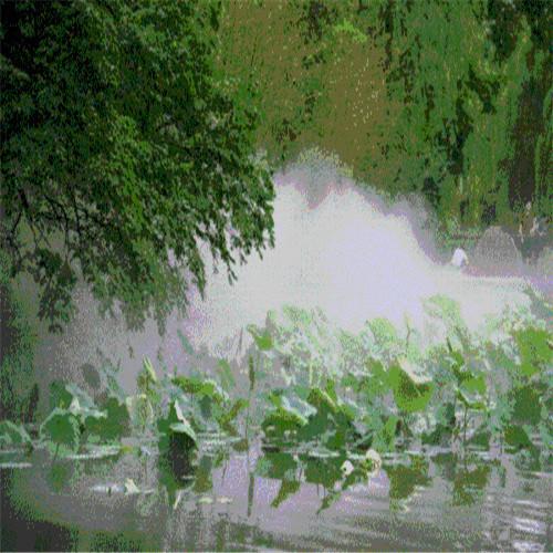 湖边水池绿化带雾喷冷雾系统工程做工完美质量好-- 深圳市通宝环境技术有限公司