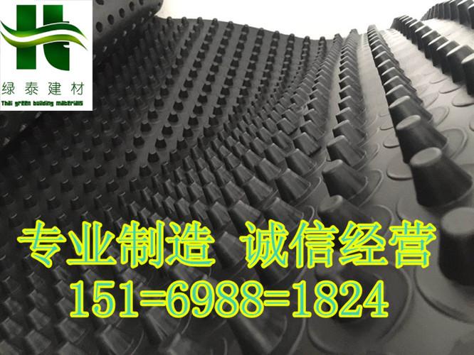 广东省惠州20高30高车库排水板_厂家送货-- 泰安市泽瑞土工材料有限公司