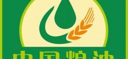 名企汇聚、大牌云集!2019中国油博会即将火爆来袭!