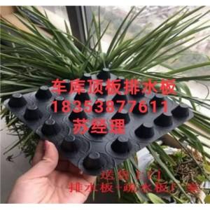塑料凸片排水板北京2公分车库排水板