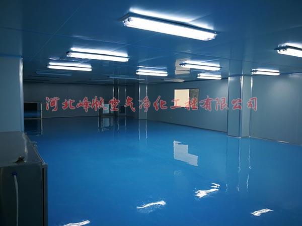 河北净化厂房无菌车间设计施工专业-- 河北峰帆空气净化工程有限公司