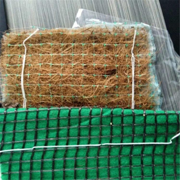 北京【抗冲击植生毯】厂家价格-- 山东世嘉工程材料有限公司