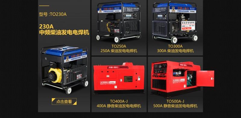 大泽动力柴油发电电焊机-- 上海仡维实业有限子公司