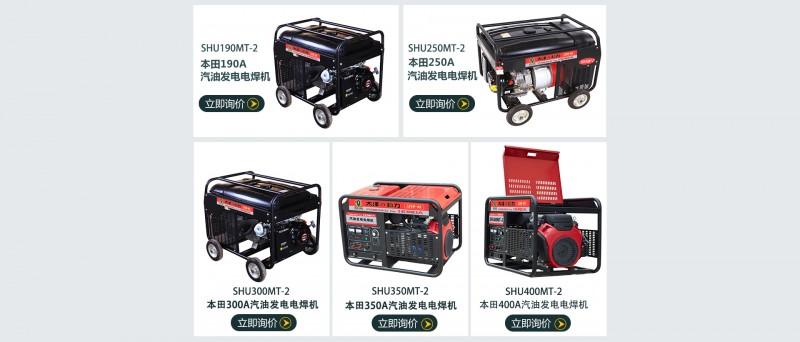 大泽动力汽油发电电焊机-- 上海仡维实业有限子公司