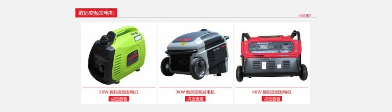 大泽动力数码变频发电机-- 上海仡维实业有限子公司