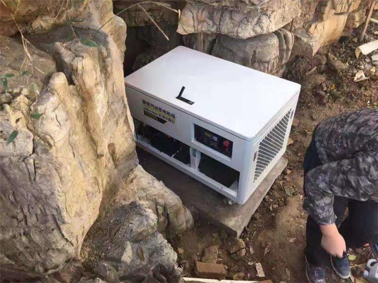 大泽静音15kw无刷汽油发电机 TOTO15-- 上海豹罗实业有限公司