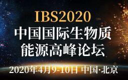 IBS2020第八届中国国际生物质能源高峰论坛 探索生物质能源转型升级之路