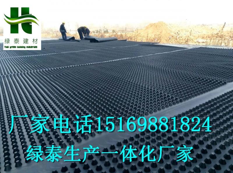 邯郸20高车库滤水板\保定2.5公分蓄排水板\注塑生产