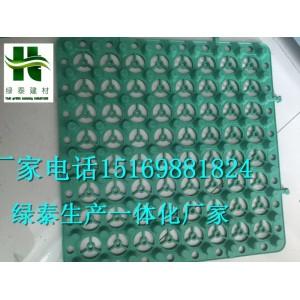 韧性强(南京2公分蓄排水板)3公分高度