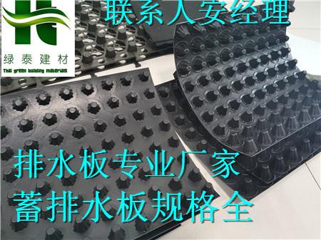 连云港3公分绿化种植车库排水板%厂家