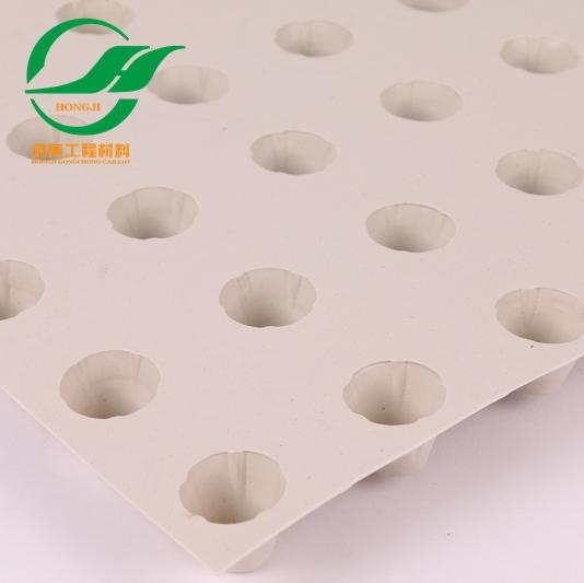 常州3cm塑料防护排水板出厂带合格证-- 惠州市鸿集工程材料有限公司